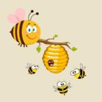 vente essaim rucher de claron